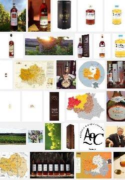 Armagnac-Ténarèze (aoc)